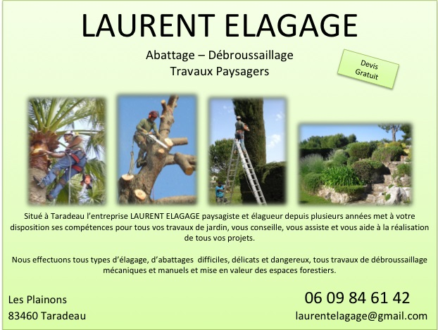 flyers laurent elagage