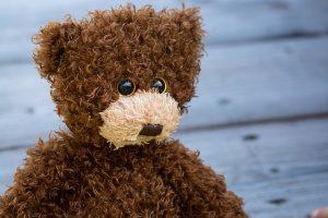 teddy-1485298_640