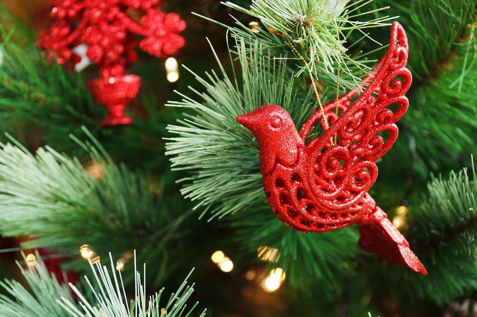 Joyeux Noel Souhaite.La Municipalite Vous Souhaite Un Joyeux Noel Et De Tres